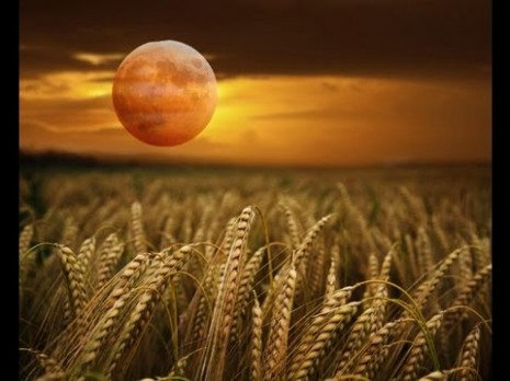 Tonight's Full Moon – Harvest Moon